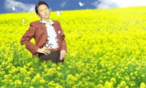 花が育つ環境